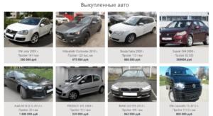 pro100vykup-site-23