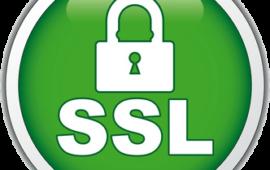 Покупка и установка SSL-сертификата на active.by: пошаговая инструкция с фото