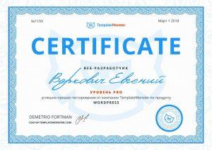 Сертификат веб-разработчика