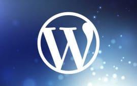 Инструкция по работе с сайтом на WordPress (+ 8 видео)