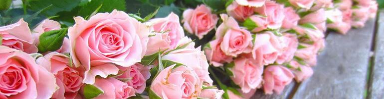 Контекстная реклама доставки цветов